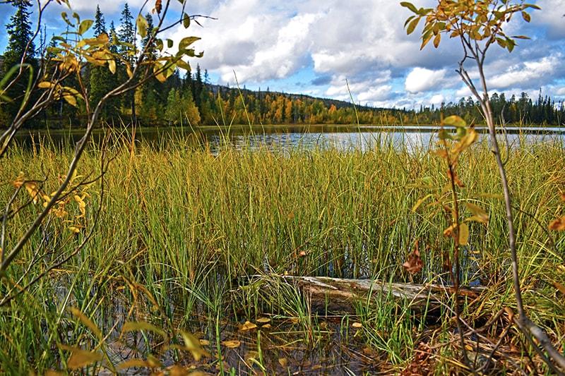 Luosto lago