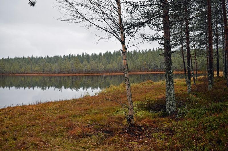Tranquilidad Finlandia