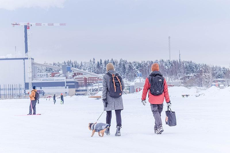 vivir y trabajar en finlandia
